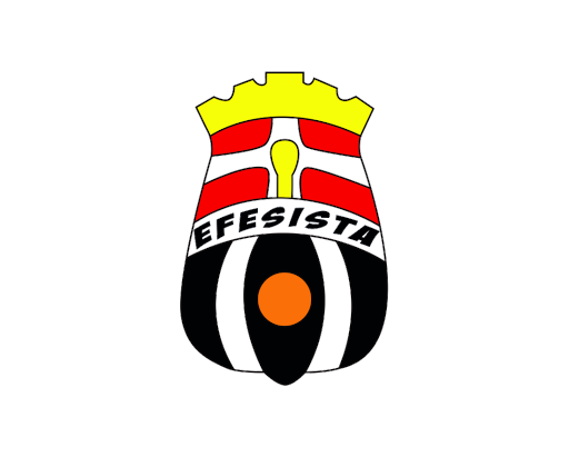 EFESISTA, Información del FC Cartagena