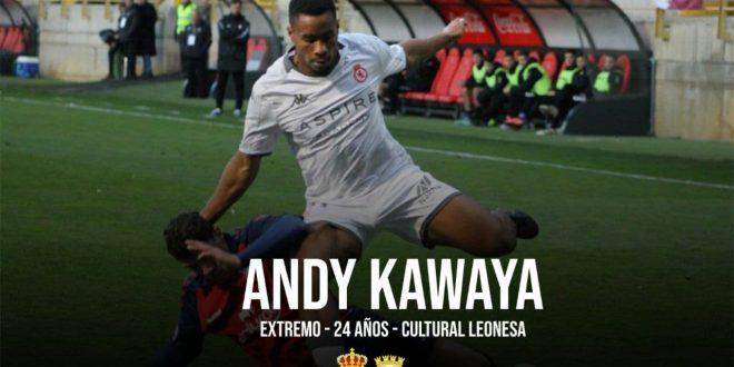 Kawaya
